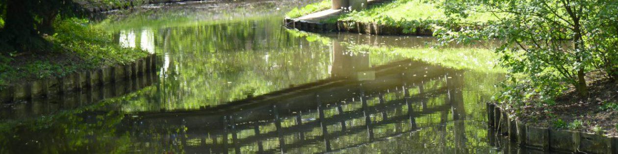 Bewonersorganisatie park Buitenoord en Omgeving